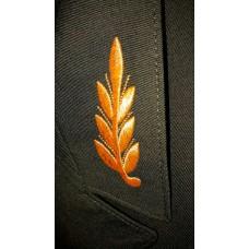 Вышивка на кителе V021