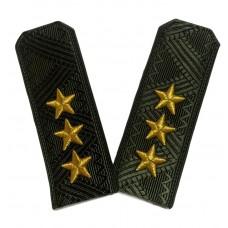 Погоны Министерства Обороны, генерал-полковник, 3D звезды P086